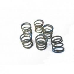 clutch springs, 6 pcs  BMW R75